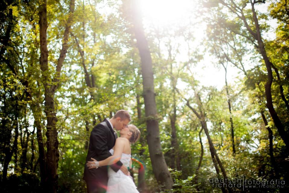 Esküvő: Bori és Anti