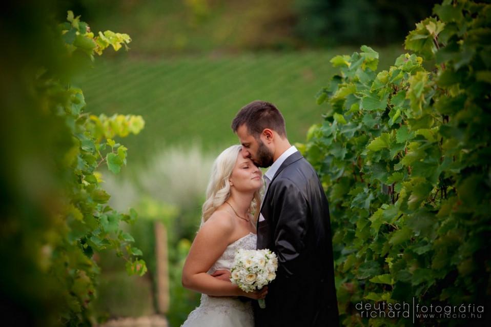 Esküvő: Marcsi és Máté