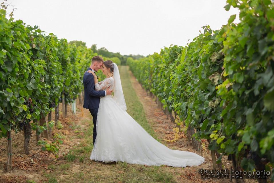Esküvő: Juci és Tibi – Fritz Tanya, Szekszárd