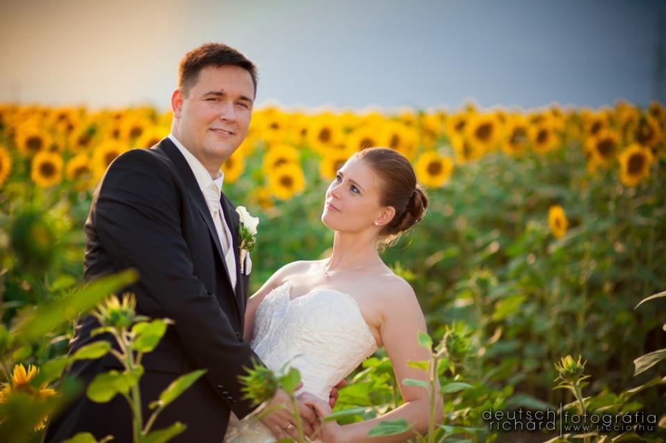 Esküvő: Edina és Tibor
