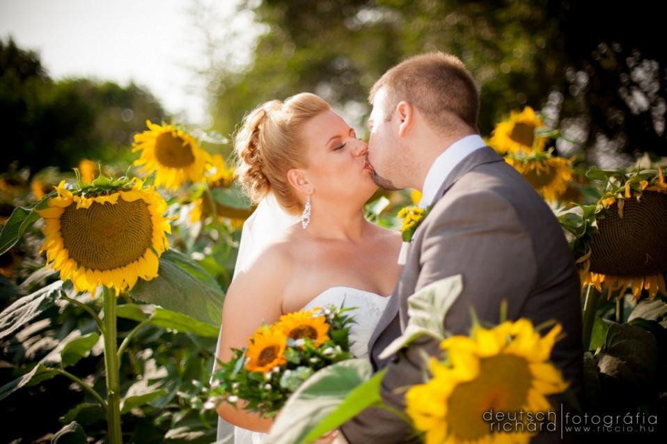 Esküvő: Zsuzsi és Csabi