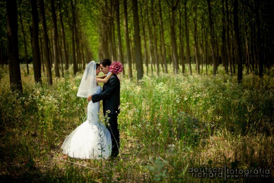 Esküvő: Eszter és Gergő